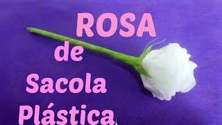 Rosa de Sacola Plástica por Flores e Flores