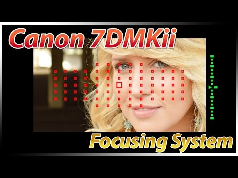 Canon 7Dii Focusing Tutorial Training | How to Focus | Overview  Review Tips Suggestions