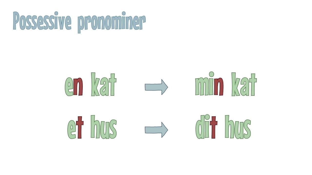 Grammatip.com - DSF - Pronominer: Possessive pronominer