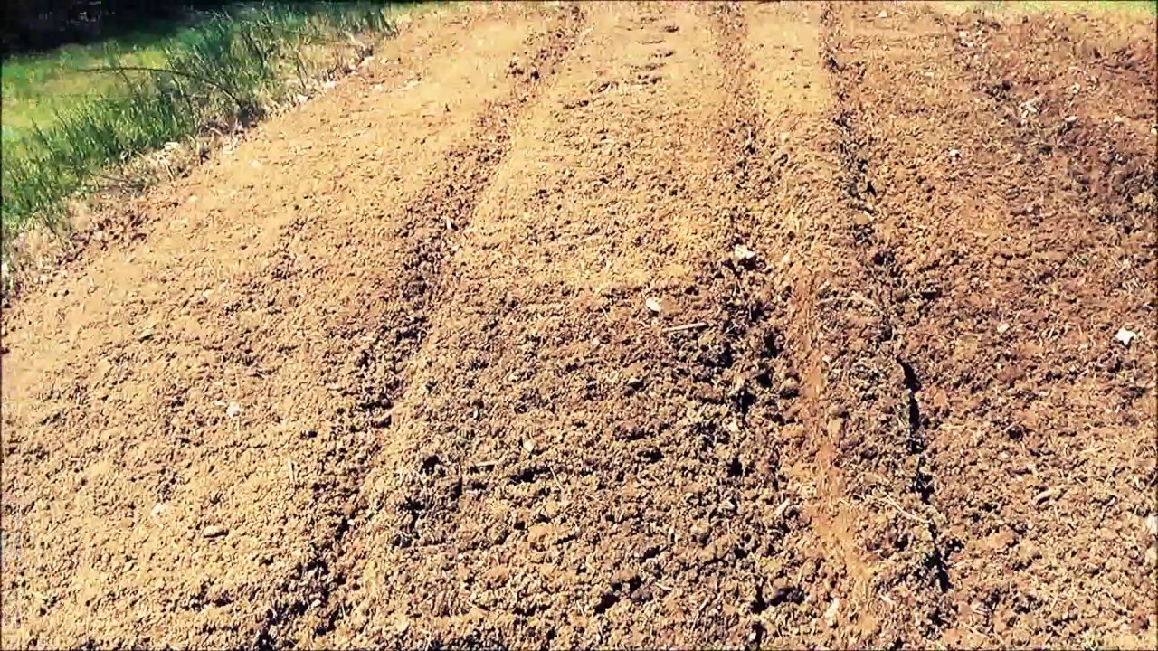 County Line rotary garden tiller from Tractor Supply - YouTube