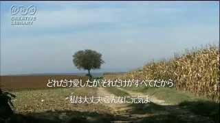 作詩/門谷憲二 作曲/丹羽応樹 「ジェルソミーナ」は、1954年に公開さ...