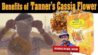 ஆவாரம்பூவின் பயன்கள் | Benefits of Tanner's Cassia Flower | Esh Vlog