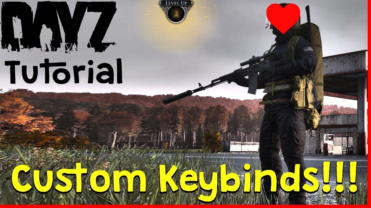 DayZ Beta: How to change controls(Rebind keys)  (Also how to