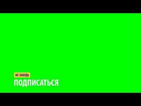 ФУТАЖ ПОДПИСКА // Green Screen // Футаж Подпишись Скачать Бесплатно