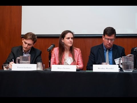 2015 Fall Conference: Litigation Funding: Panel 2