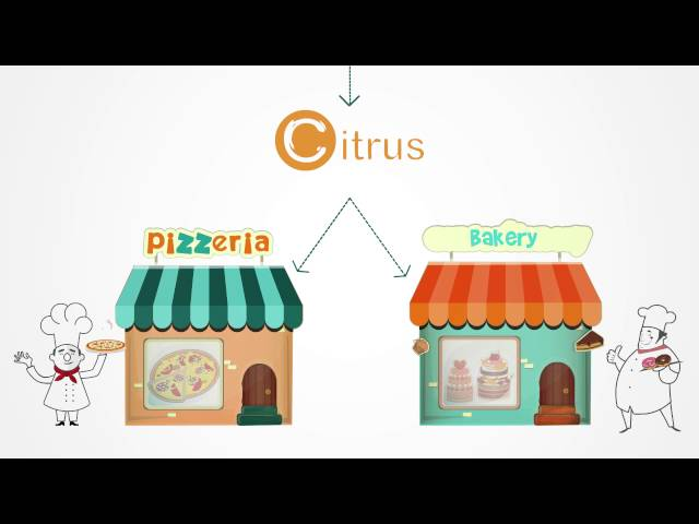 Citrus Marketplace Payment Solution - YouTube