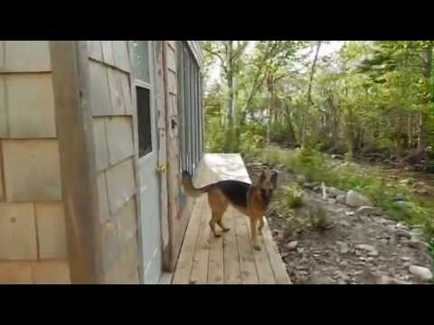 Cabin for Sale Cape Breton Island