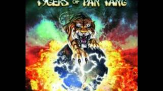 tygers of pan tang- The Devil You Know