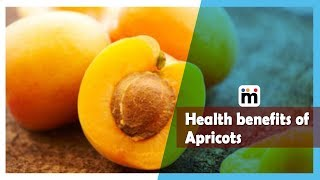 Health benefits of Apricots | Mijaaj Lifestyle