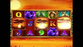 Neverland Casino - Grand Lion from WGAMES (1x1)