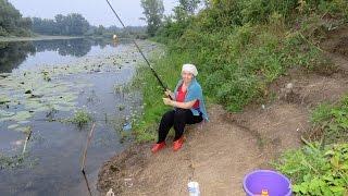 Рыбалка.  Карась (июль 2016)