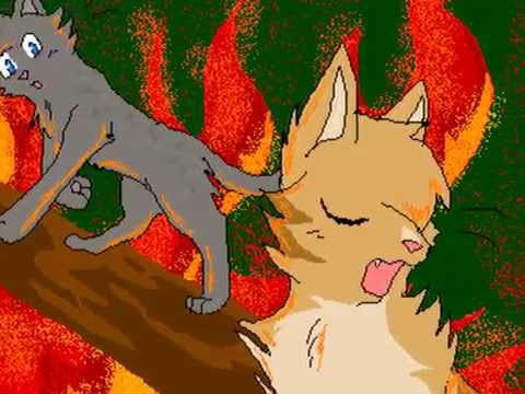 я сошла с ума текст. коты воители- Белочка - Я сошла с ума слушать онлайн мп3
