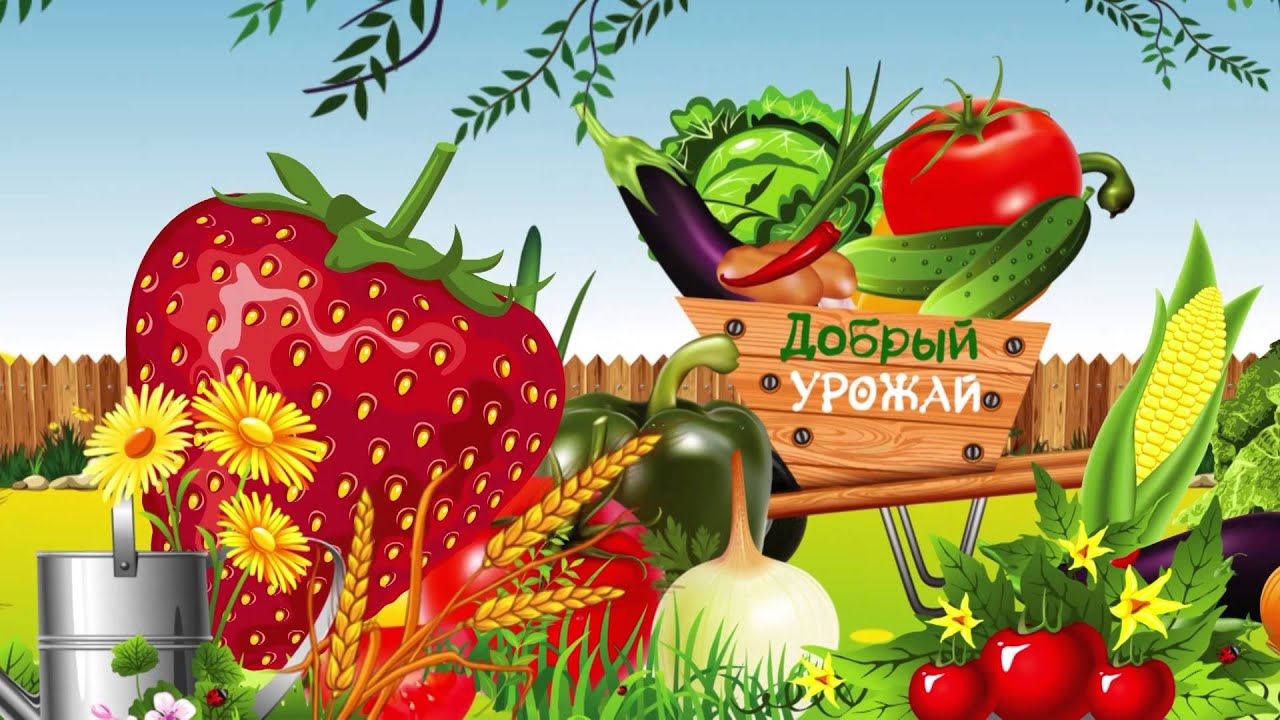 Свекрови, картинки про урожай прикольные