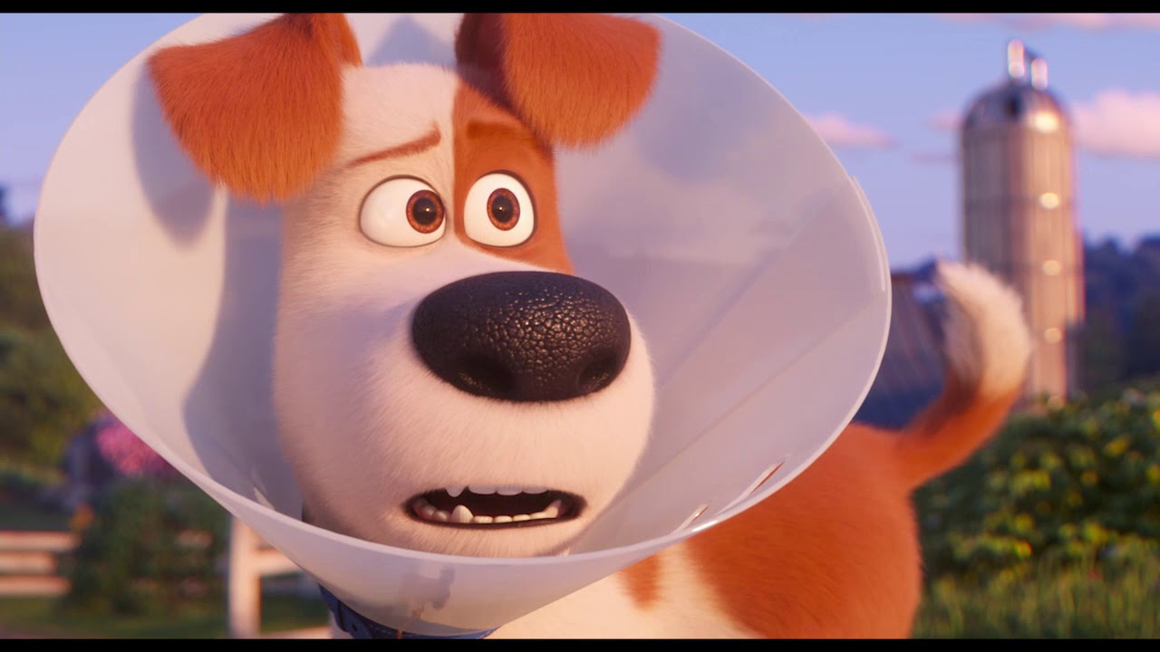 35f078b5b Tajný život maznáčikov 2 / The Secret Life of Pets 2 (2019) 20s spot ...