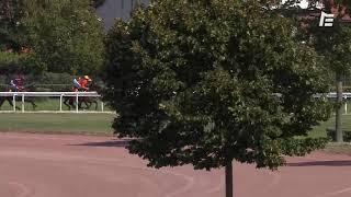 Vidéo de la course PMU PRIX OCCITANIE