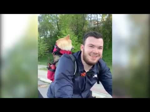 Ярославцы празднуют всемирный День велосипеда, не слезая с двухколесных