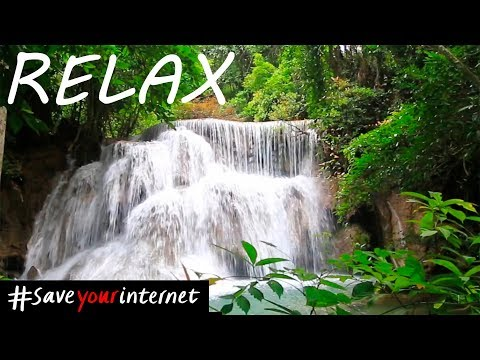 Calm Mind: Relaxing Music for Peaceful Mind - Sleep Sound