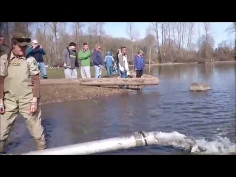 Trout Stocking Walter Wirth Lake 2016 - Fishing