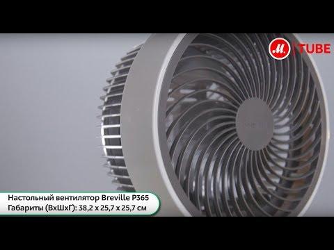 Обзор настольного вентилятора Breville P365