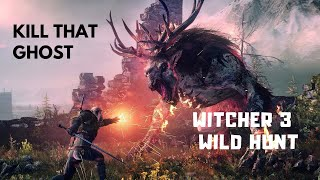 Killing That THICK Ghost in Witcher 3