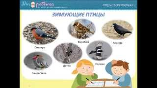 """Синичкин праздник"". Презентация для детей про птиц-синиц."