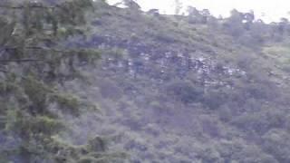 San Miguel Del Progreso Tlaxiaco Oaxaca
