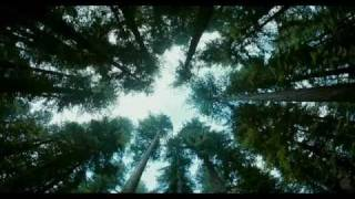 The Tree of Life - Official Trailer [HD] 2011 (Fantasy / Drama)