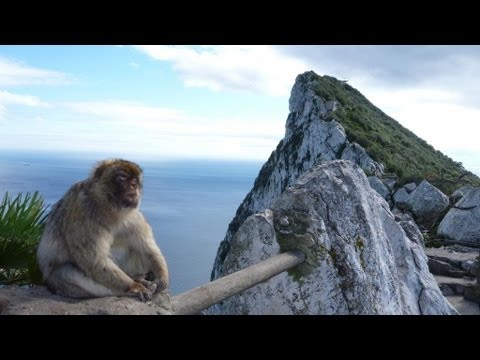 Stunning Views! Rock Of Gibraltar Adventure! Cable Cars & Barbary Apes!