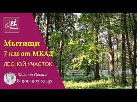 ЛЕСНОЙ УЧАСТОК 7 км от МКАД | Мытищи | Ярославское шоссе