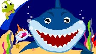 Video Baby Shark Song | Animal Songs with lyrics download MP3, 3GP, MP4, WEBM, AVI, FLV April 2018