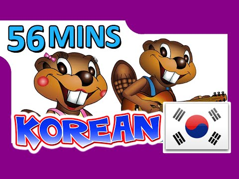 Korean Level Dvd