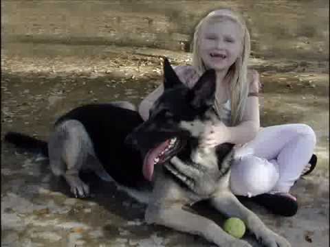 Dogs Saved by Austin German Shepherd Rescue