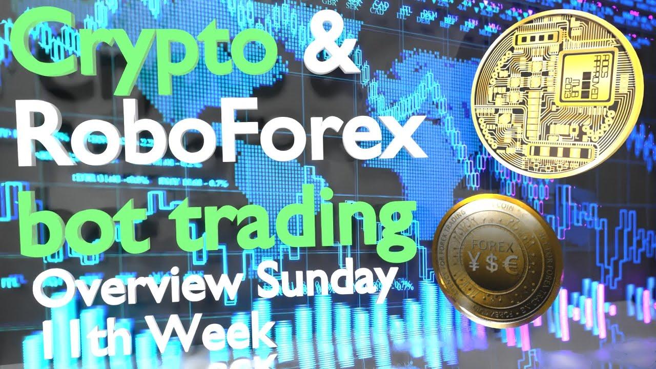 Roboforex principianti senza deposito bonus share trading tutorial