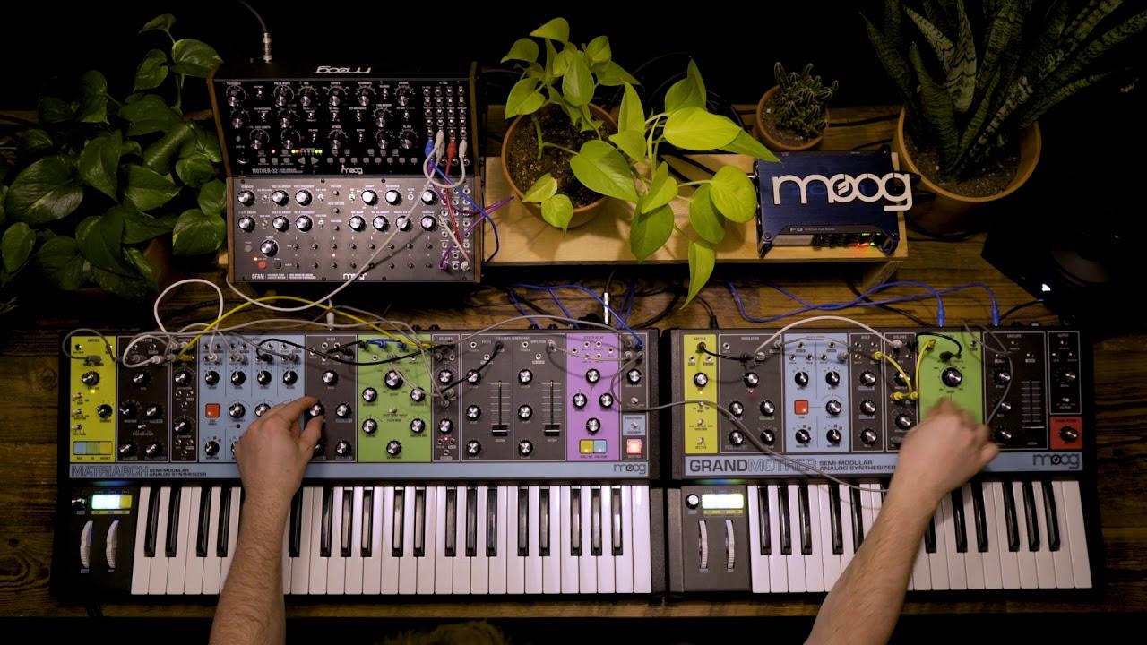 Moog Semi Modular Synthesizers Interconnectivity Ii Youtube