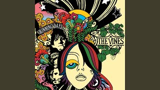 Provided to YouTube by Universal Music Group Rainfall · The Vines W...