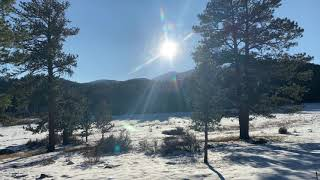 Oct 29 - Field Update From The Estes Park Entrance Of Rocky Mountain National Park