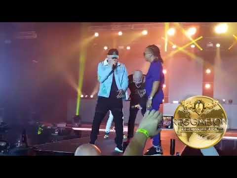 Bad Bunny Ft  Ozuna Nio Garcia Y Darell   Te Boté Live Puerto Rico Concierto TRAPKINGZ