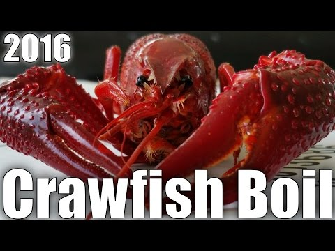 How To - Louisiana Cajun Crawfish Boil - 2016 HD