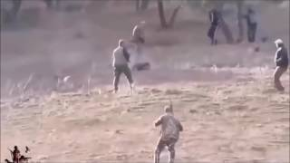 Tehlikeli Domuz Saldırıları (PİG vs HUMAN ATTACKS)
