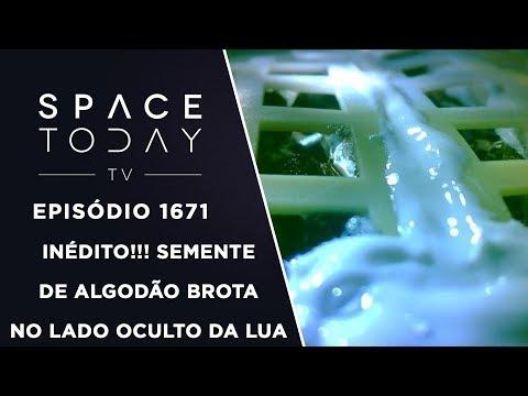 Inédito!!! Semente de Algodão Brota No Lado Oculto da Lua - Space Today TV Ep.1671