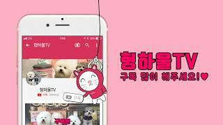[강아지간식건조기청소] 리큅식품건조기청소 건조기청소방법…