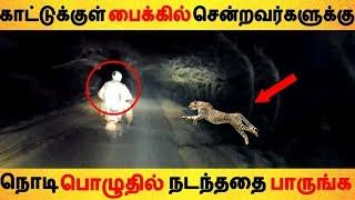 காட்டுக்குள் பைக்கில் சென்றவர்களுக்கு நொடி பொழுதில் நடந்ததை பாருங்க Tamil News   Latest News   Viral