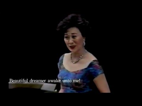 Beautiful dreamer (Lyrics )  范宇文