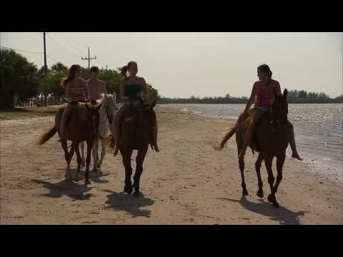 Anna Maria Island Get Into Horse Surfing Video Production © Dreamtime Entertainment, Florida