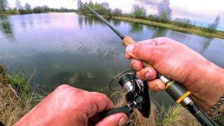 Щука начала просыпаться после нереста Рыбалка на спиннинг в мае