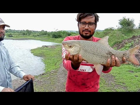 fish-hunting-][-rohu-fish-catching