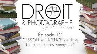 Capsule n° 12 - Licences et droit d'auteur