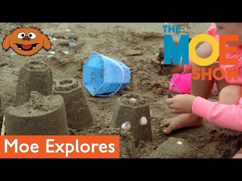 The Moe Show: Moe Explores — Sandcastles