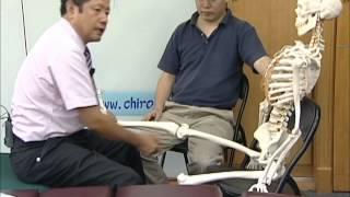 脊椎矯正教學12_下肢矯正01_膝關節_股骨內前偏_整脊教學整骨正骨脊骨脊柱側彎骨傷推拿四肢