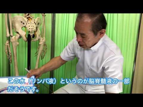 めまい・耳鳴り・難聴・メニエール病を整体で改善 !